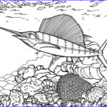 Coral Reef Coloring Page Unique Photography Swordfish Between Coral Reef Coloring Page Color Luna