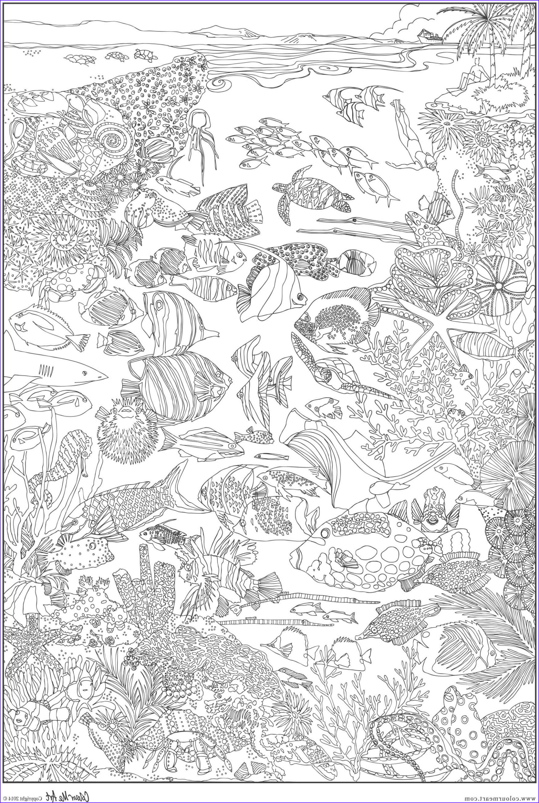 Coral Reef Coloring Pages Luxury Stock Great Barrier Reef Coloring Pages Bing Images