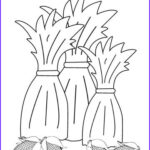 Corn Stalk Coloring Page Elegant Photos Use Our Free Printable Designs To Keep Kids Of All Ages