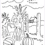 Corn Stalk Coloring Page New Collection Corn Stalks Drawing At Getdrawings