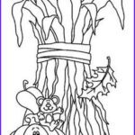 Corn Stalk Coloring Page New Photos 1000 Images About Yuma On Pinterest