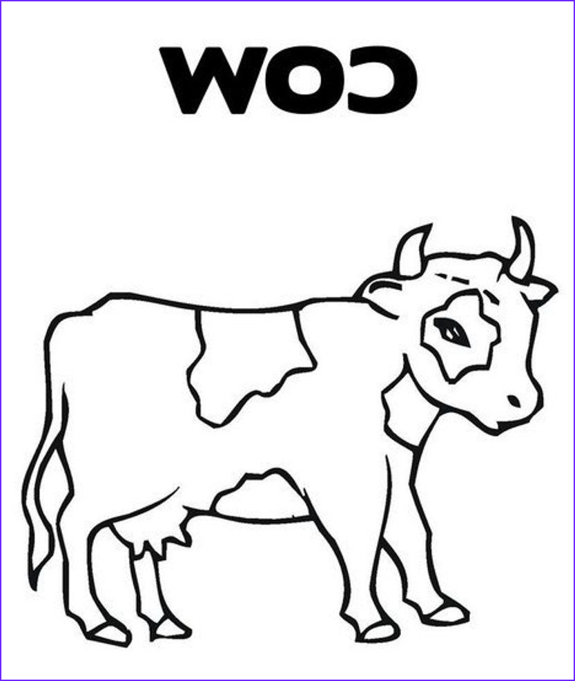 c cow coloring pages
