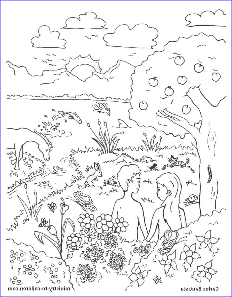 creation bible coloring page