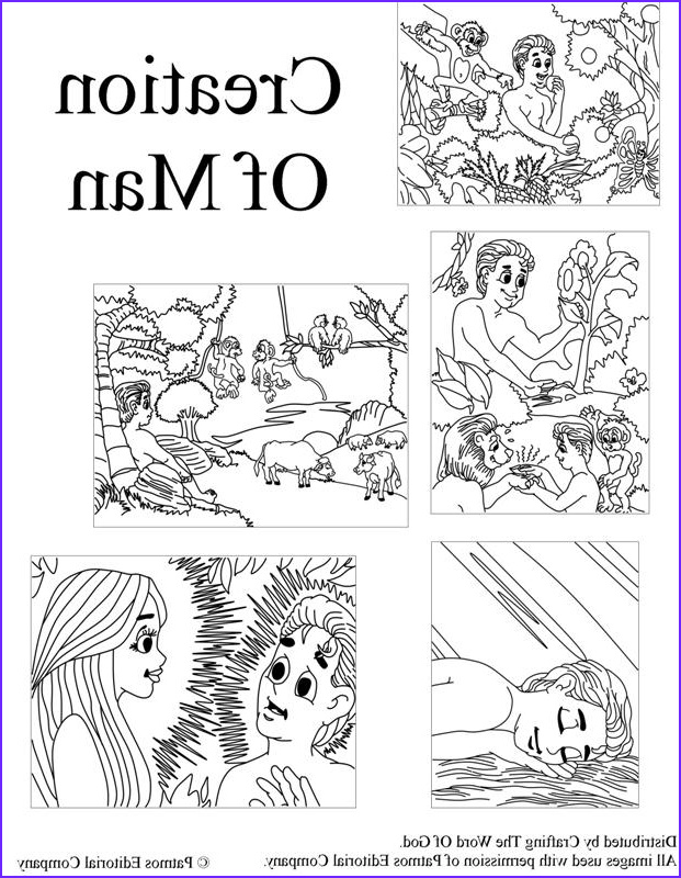 Creation Coloring Sheets Luxury Photos Adam and Eve Crafting the Word God