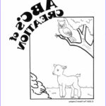"""Creation Coloring Sheets New Gallery 29 Best Images About Creation """"sunday School"""" On Pinterest"""