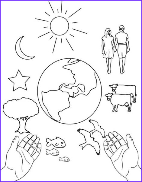 Creation Coloring Sheets New Image Patterns and Color Sheets