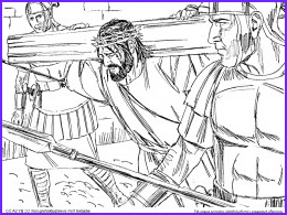 bible coloring pages NT