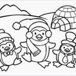 Cute Baby Coloring Pages Beautiful Gallery Colours Drawing Wallpaper Cute Baby Penguin Colour