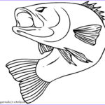 Cute Fish Coloring Pages Beautiful Stock Printable Cute Fish Coloring Pages Fish Coloring