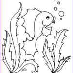 Cute Fish Coloring Pages Elegant Photos Cute Fish Coloring Pages At Getcolorings