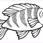 Cute Fish Coloring Pages New Image Print & Download Cute And Educative Fish Coloring Pages