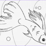 Cute Fish Coloring Pages Unique Stock Cute Fish Coloring Page