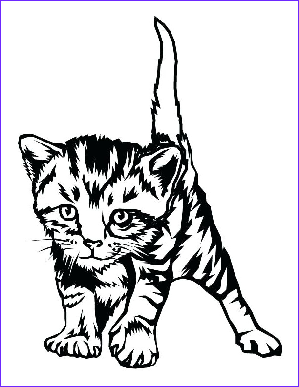 Cute Kitten Coloring Pages Luxury Photos the Best Free Kitten Drawing Images Download From 1132