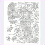 Dachshund Coloring Book Awesome Collection Dachshund Coloring Book For Adults And Children Volume 1