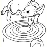 Dachshund Coloring Book Awesome Photos 16 Best Dachshund Coloring Pages Images On Pinterest