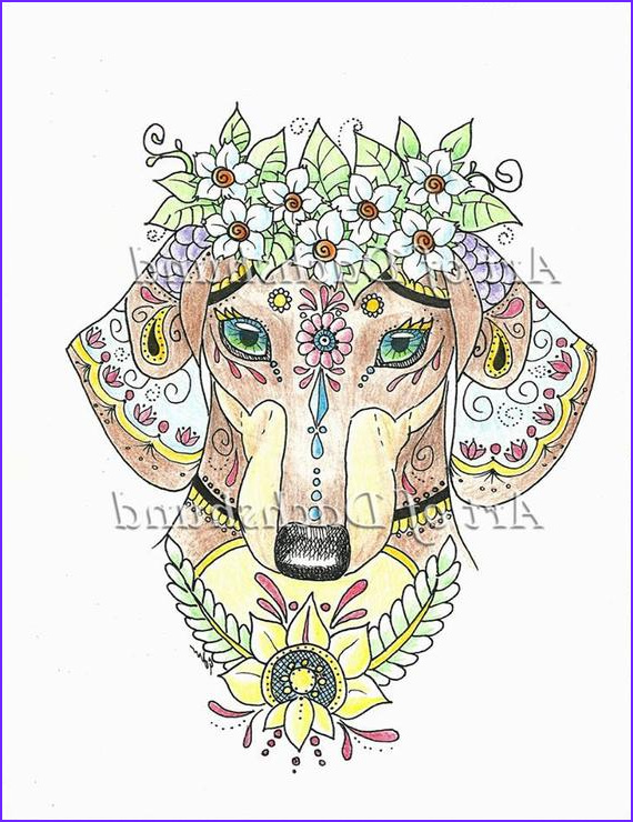 art of dachshund coloring book physical