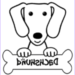 Dachshund Coloring Book Elegant Photography Dachshund Coloring Pages