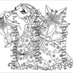 Dachshund Coloring Book New Photos Art Of Dachshund Single Coloring Page