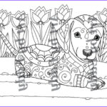 Dachshund Coloring Books Awesome Photos Art Of Dachshund Single Coloring Page