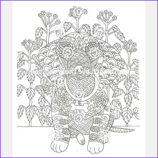 dachshund coloring book for adults and children volume 2