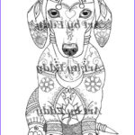 Dachshund Coloring Books Beautiful Collection Art Of Dachshund Single Coloring Page