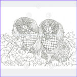 Dachshund Coloring Books Beautiful Images Dachshund Coloring Book For Adults And Children Volume 2