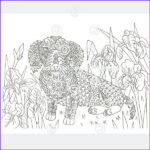 Dachshund Coloring Books Best Of Images Dachshund Coloring Book For Adults And Children Volume 2