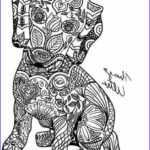 Dachshund Coloring Books Best Of Images Dachshund Dog Pages To Color