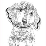 Dachshund Coloring Books Best Of Photography Art Of Dachshund Single Coloring Page