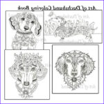 Dachshund Coloring Books Best Of Photos Art Of Dachshund Coloring Book Volume No 1 Downloadable
