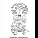 Dachshund Coloring Books Cool Photography Art Of Dachshund Coloring Book Volume No 1 Physical Book
