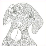Dachshund Coloring Books Cool Photos Dachshund Coloring Book For Adults And Children Volume 2