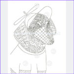 Dachshund Coloring Books Elegant Gallery Dachshund Coloring Book For Adults And Children Volume 2