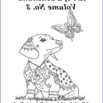 Dachshund Coloring Books Inspirational Photography Dachshunds Drawing At Getdrawings