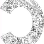 Daily Coloring Pages Unique Images 605 Best Alphabet And Fonts Images On Pinterest