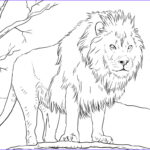 Daniel And The Lions Den Coloring Pages Luxury Gallery 6247 Afrikanskij Lev