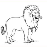 Daniel And The Lions Den Coloring Pages Luxury Image Coloriage Flin 6 Coloriage Felins Coloriages Animaux