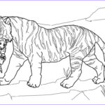 Daniel And The Lions Den Coloring Pages Luxury Photos Andreyeltsovru