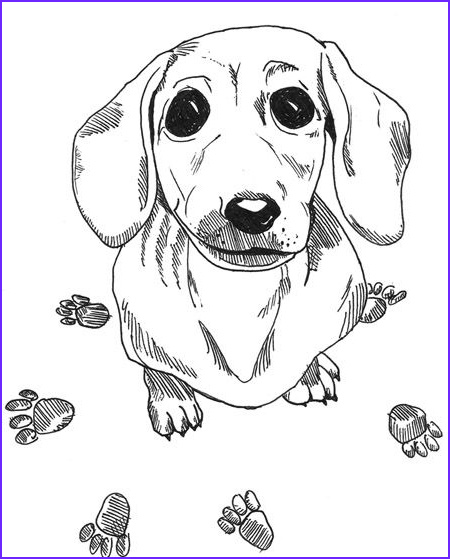 Daschund Coloring Book Beautiful Collection Dachshund Printable Coloring Pages Doxie Heaven