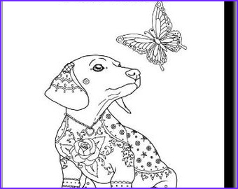 miniature dachshund coloring pages