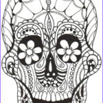 Day Of The Dead Coloring Pages Beautiful Photos 307 Best Images About Skull Day Of The Dead Coloring On