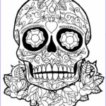 Day Of The Dead Coloring Pages Best Of Image Day Of The Dead Skull Coloring Pages Bestofcoloring