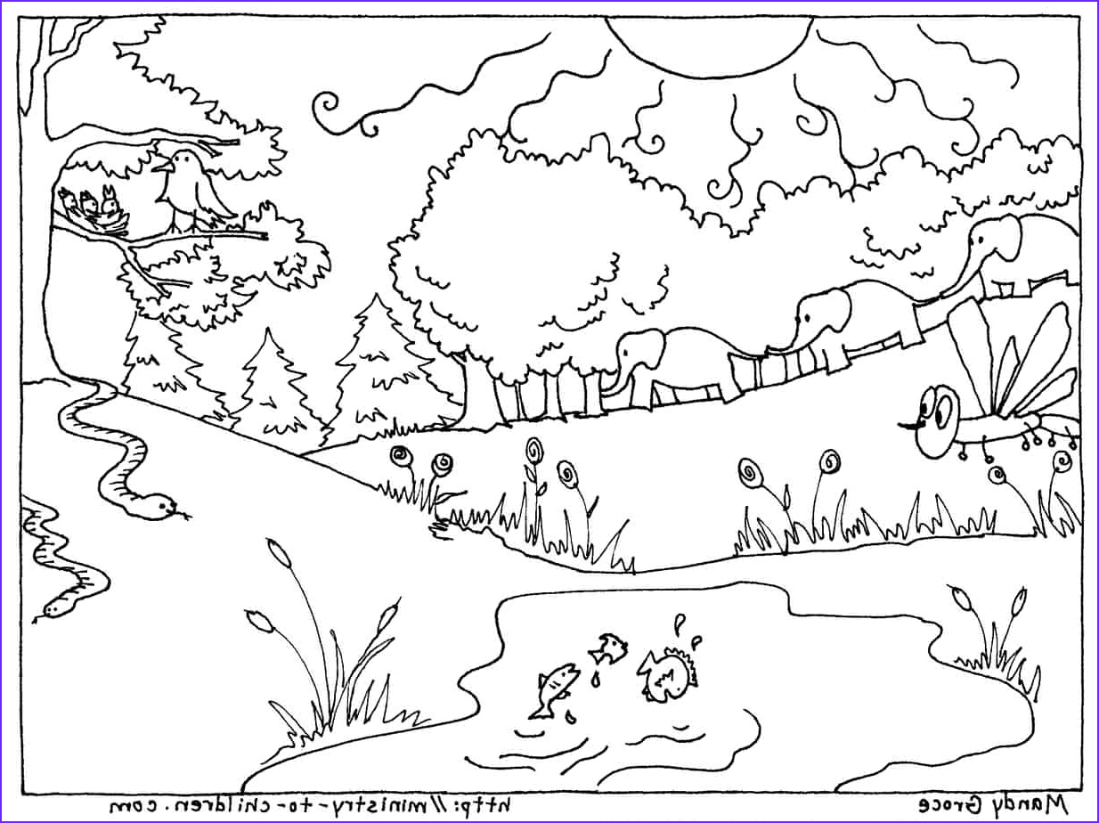 Days Of Creation Coloring Pages Inspirational Photography Creation Coloring Pages God Made the Animals Fish Birds