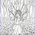 Detailed Coloring Pages For Adults Inspirational Photography Fairy Coloring Pages