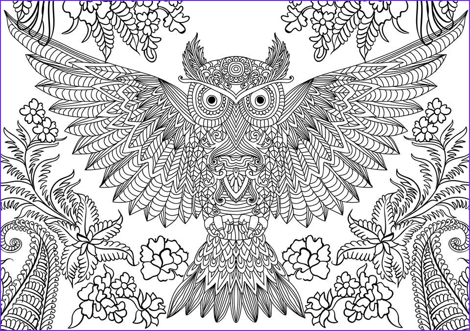 Detailed Coloring Pages for Adults Luxury Photos Owl Coloring Pages for Adults Free Detailed Owl Coloring