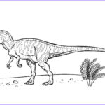 Dinosaur Coloring Pictures Awesome Photography Pimg