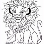 Disney Adult Coloring Books Beautiful Photos Pin By Pamela Miller On Printables Coloring Pages