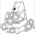 Disney Adult Coloring Books New Gallery 121 Best Disney Coloring Pages Images On Pinterest