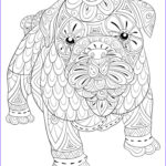 Dog Adult Coloring Book Awesome Photography Adult Coloring Page A Cute Isolated Dog For Relaxing Zen