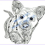 Dog Adult Coloring Book Best Of Collection Corgi Puppy Love Dogs Digital Pdf Download Coloring